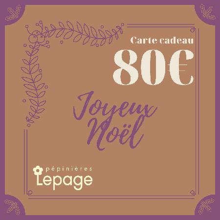 Carte Cadeau 80 Euros